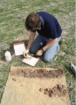 PNC Soil Sampler