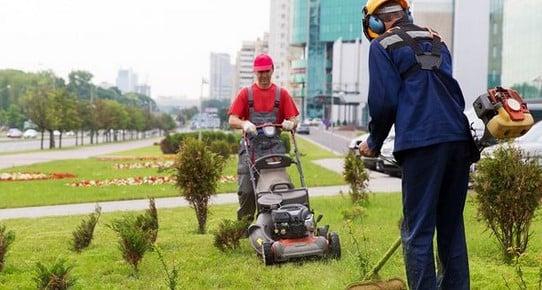 lawn crew